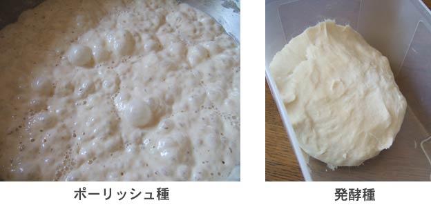 blog689.jpg